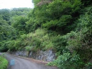着工前 林道桃の木谷線法面対策工事